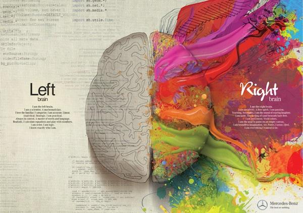 right brain, left brain, creative brain, logical brain